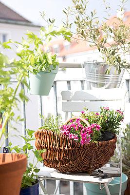 Balcony springtime - p454m1143680 by Lubitz + Dorner