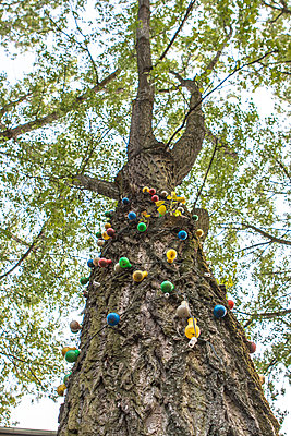 Sommerfest - p703m1200264 von Anna Stumpf