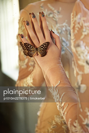 Butterfly on hand - p1010m2278375 by timokerber