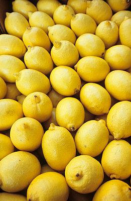 Zitronenkiste - p0450972 von Jasmin Sander