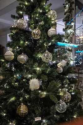 Weihnachtsbaum in einem Schaufenster - p1057m2044757 von Stephen Shepherd