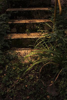 Left behind - p1255m1083281 by Kati Kalkamo
