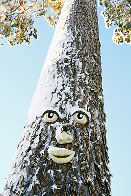 Face on tree trunk - p312m1147472 by Hakan Hjort