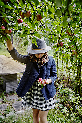 Girl picking apples - p312m2092082 by Anna Kern