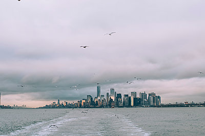 USA, New York, Panorama of Manhattan skyline, birds fly - p300m2069563 by Oscar Carrascosa Martinez