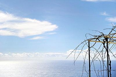 Blick aufs Meer - p949m658759 von Frauke Schumann