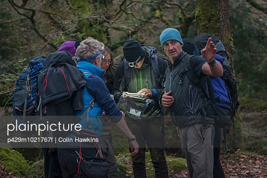 Group of people in forest with map - p429m1021767f by Colin Hawkins