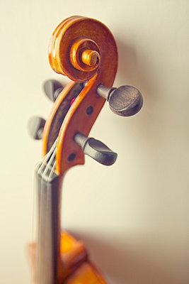 Geigenhals mit Schnecke - p3300452 von Harald Braun
