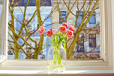Blumen auf der Fensterbank - p432m1123955 von mia takahara