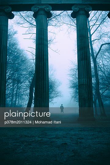p378m2011324 von Mohamad Itani
