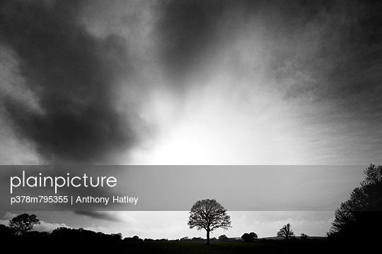p378m795355 von Anthony Hatley