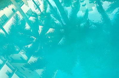 Spiegelung im Schwimmbecken - p1250m1059845 von werner bartsch