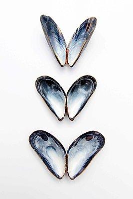 Butterfly effect - p258m1362843 by Katarzyna Sonnewend