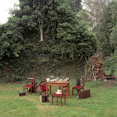 Unordnung im Garten - p0830147 von Thomas Lemmler