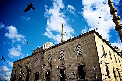 doves near a mosque - p5862199 by Kniel Synnatzschke