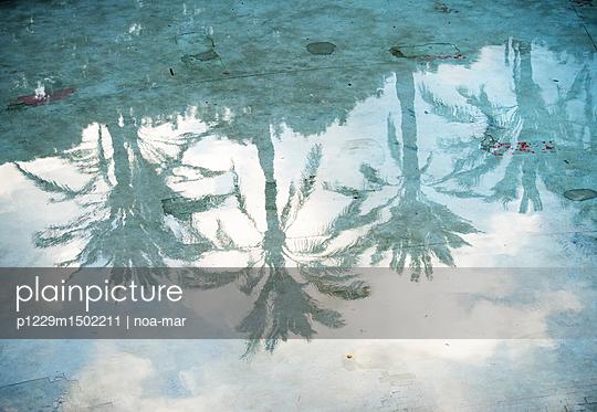Mirroring - p1229m1502211 von noa-mar