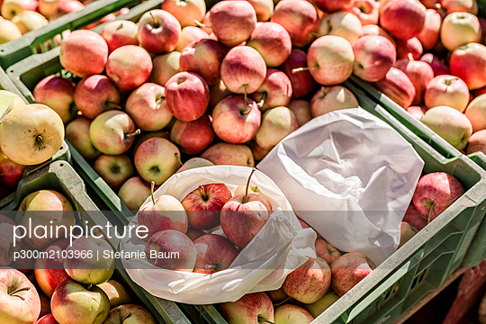 Cloth bag and plastic bag on boxes with apples on weekly market - p300m2103966 by Stefanie Baum