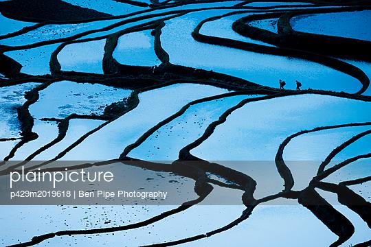 p429m2019618 von Ben Pipe Photography