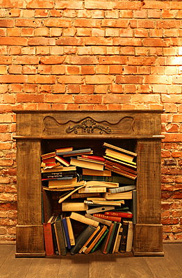 Books in the chimney - p045m892384 by Jasmin Sander