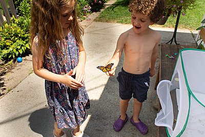 High angle view of boy holding a monarch butterfly while standing in his yard - p1166m2255859 by Cavan Images