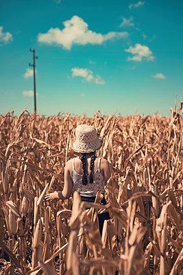 Girl in a corn field - p1432m2258596 by Svetlana Bekyarova