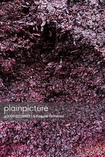 Crushed grapes at winery - p300m2225863 by Ezequiel Giménez