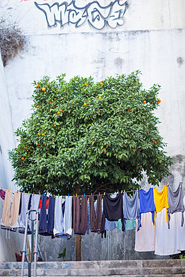 Clothesline in the city - p795m1532013 by JanJasperKlein