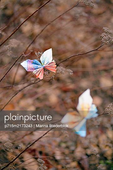 Two butterflies, folded money - p715m2173243 by Marina Biederbick