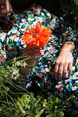 Blume betrachten - p045m1585114 von Jasmin Sander