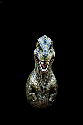 Dinosaur - p248m1004087 by BY