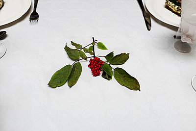 Table decoration at party - p956m1044368 by Anna Quinn