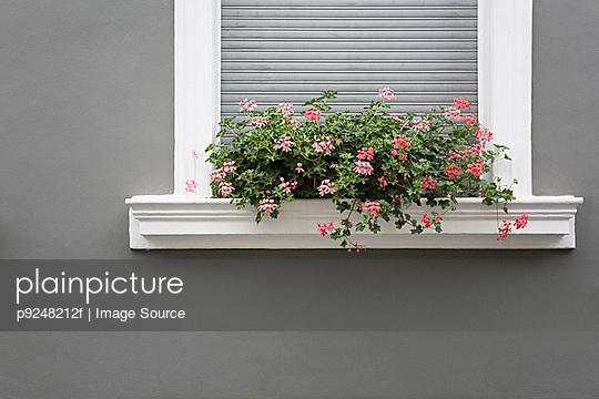 A window box - p9248212f by Image Source