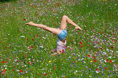 Junge Frau in einer Blumenwiese I - p427m917316 von R. Mohr
