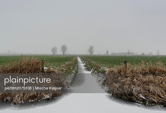 Overdiepse polder in agricultural area, Waspik, Noord-Brabant, Netherlands - p429m2075105 by Mischa Keijser