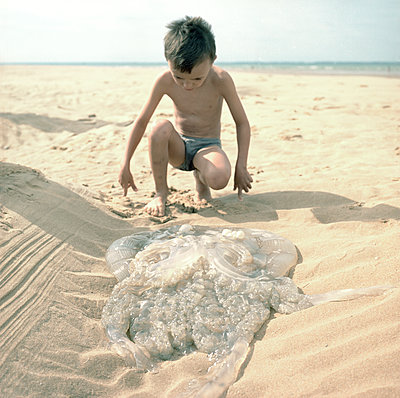 Boy looking at a jellyfish - p1468m1528584 by Philippe Leroux