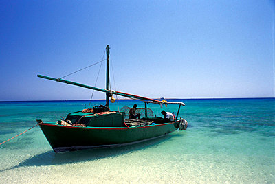 Green fishing Boat on beach  - p6441671 by Dorian Shaw