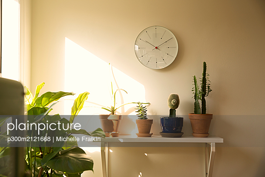 Wall clock and potted plants on shelf in a living room - p300m2121668 by Michelle Fraikin