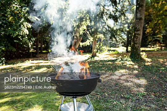Barbecue grill in garden - p623m2294749 by Eric Audras