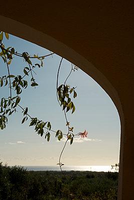 Ferienhaus mit Meerblick auf Sardinien - p470m2229700 von Ingrid Michel