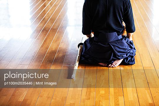 p1100m2035446 von Mint Images