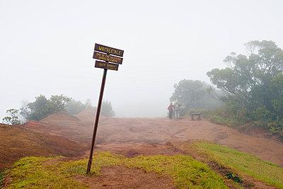 USA, Hawaii, Waimea, Waialeale, Puu O Kila Lookout, rainiest spots on earth, Kokee State Park - p300m1023029f by Biederbick&Rumpf