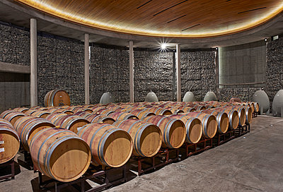 Winery, modern wine cellar and bottling plant - p390m1556473 by Frank Herfort