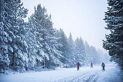 Skiing at CairnGorm Mountain, Glenmore, Cairngorms National Park, Scotland, United Kingdom, Europe - p871m1499845 by Matthew Williams-Ellis