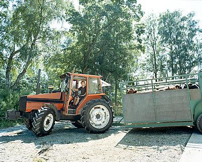 Farm - Tractor - p312m1164816 by Nicho Sodling