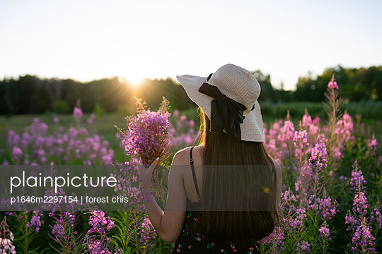 Woman on a meadow picking flowers - p1646m2297154 by Slava Chistyakov