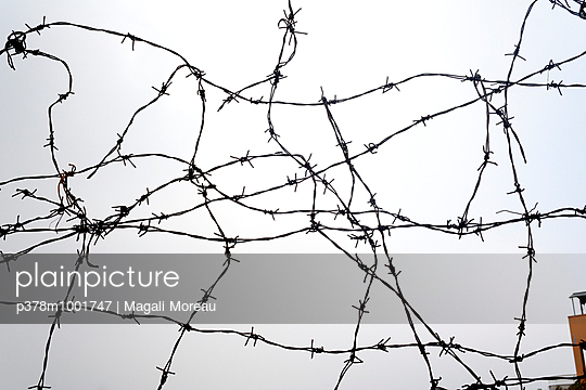 Barbed wire fence - p378m1001747 by Magali Moreau