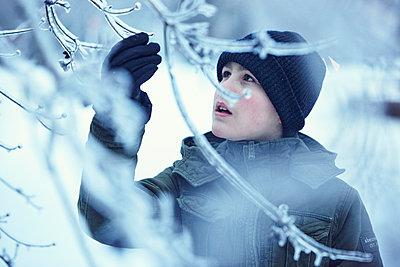 Boy looking at winter twig - p312m1164623 by Johan Alp