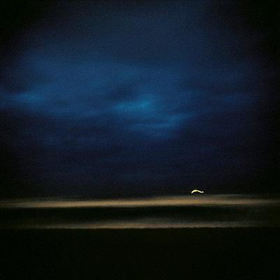 ocean beach (anglet)   - p5672685 by Sandrine Agosti-Navarri