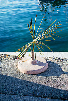Palm Leaf Installation in the harbour of Vrsar - p728m2027253 by Peter Nitsch