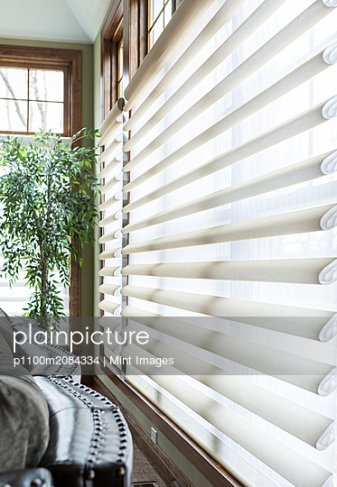 Blinds on window in living room,Spencerport, New York, USA - p1100m2084334 by Mint Images
